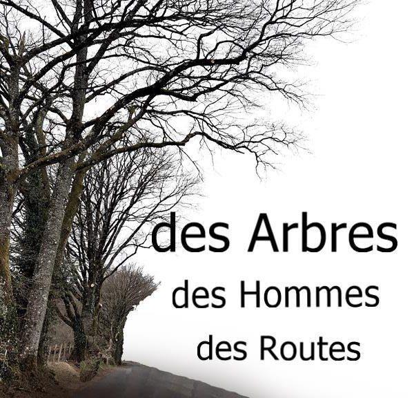 Des Arbres des Hommes des Routes
