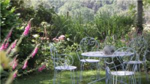 Le jardin D'Arsac : Bienvenue dans mon jardin au naturel @ St Fréjoux