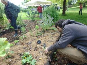 """Visite des Jardins : SEL de Terre Tulle @ TULLE, aux jardins de Bourbacoup (quartier de l'Auzelou) et plus précisément au niveau de la """"forêt du souvenir""""."""