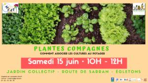Plantes compagnes: comment associer les cultures au potager @ Egletons, jardin collectif du Rabinel